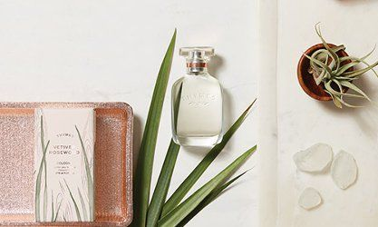 Thymes Vetiver Rosewood, Lavender Honey & Eucalyptus White Tea ~ new fragrances