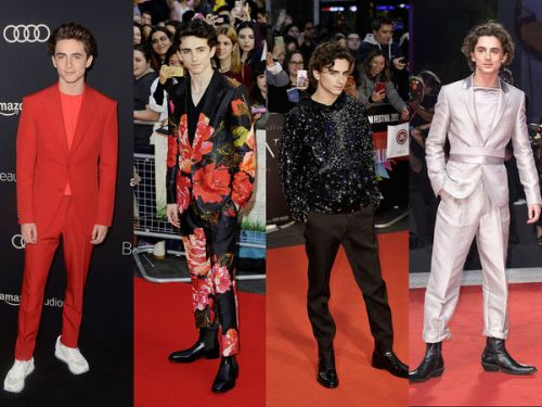 PHOTOS. Timothée Chalamet : nouvelle star d'Hollywood et icône de mode