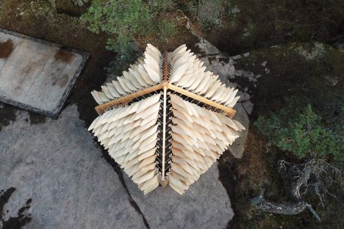 A «Shiver House» Adapting to the Forces of Nature