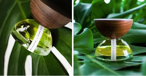 Xinu Monstera & Carta Moena 12|69 ~ fragrance reviews