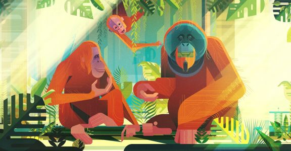 New Stunning Illustrations by James Gilleard