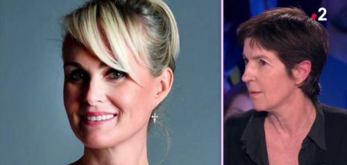 "VIDEO. Christine Angot prend la défense de Laeticia Hallyday:  ""Il faut faire attention à la manière de traiter Laeticia"""
