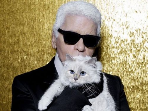 Karl Lagerfeld lègue sa fortune à sa chatte. mais en a-t-on le droit ?